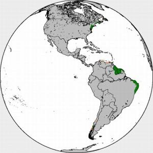 Dutch_in_the_Americas