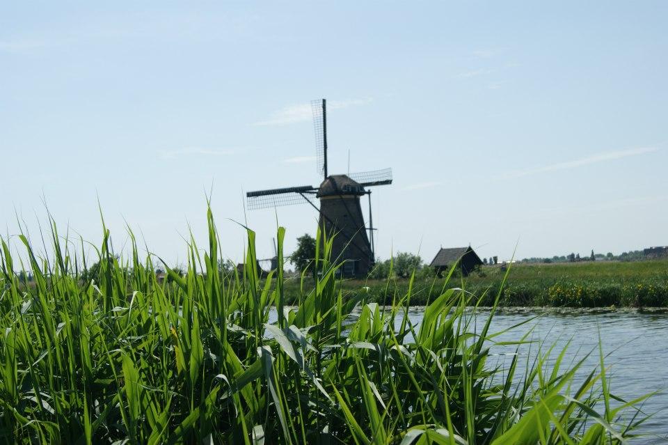 Kinderdijk (1)