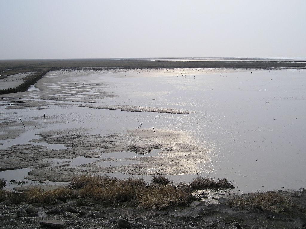 Morze_Wattowe